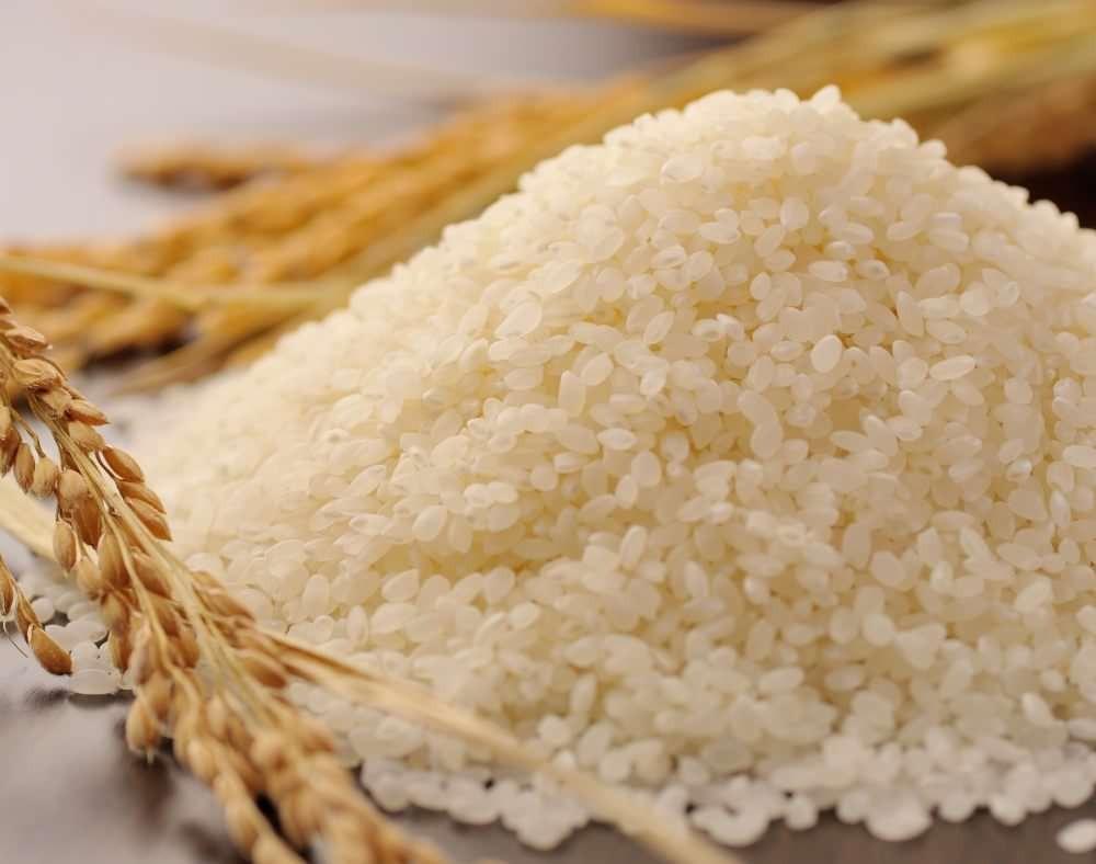 稻米的品質