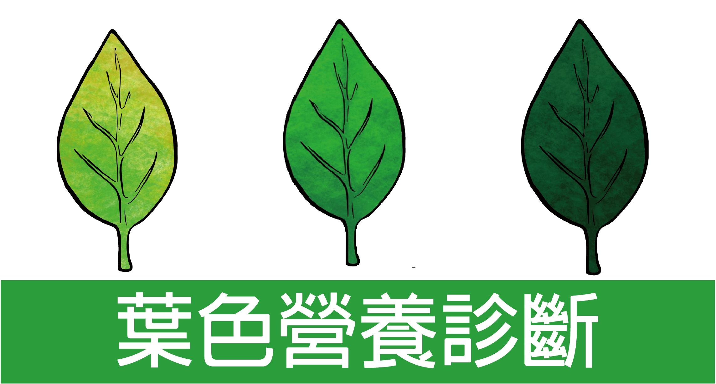 葉色營養診斷