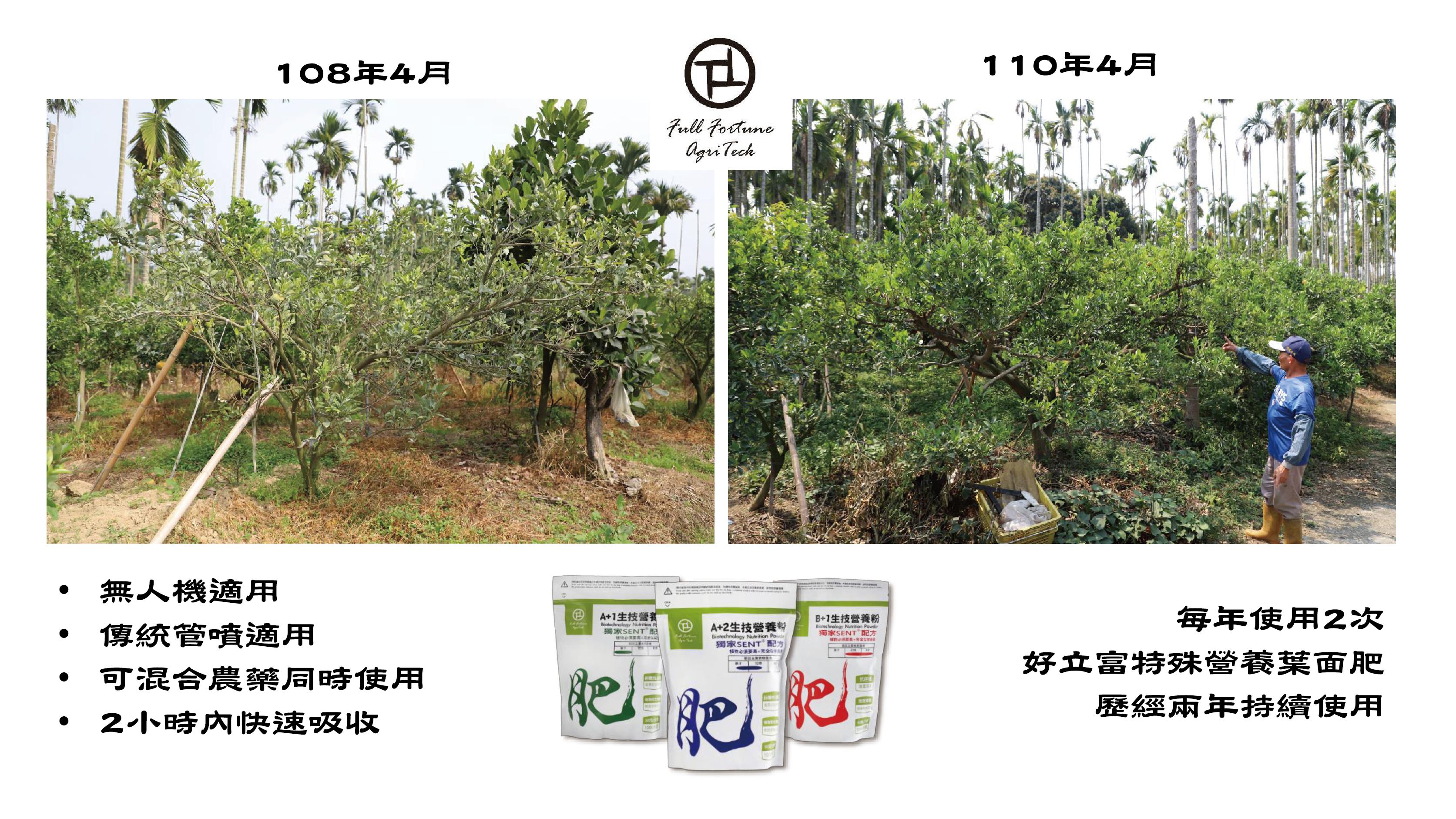 果樹的成果持續兩年的使用見證