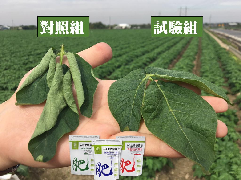 SENT生技營養粉的效果-保水度/保鮮度延長